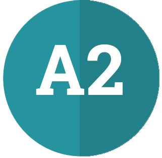 A2 - Flyers